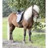 Sedlo za islandske konje BORGANES