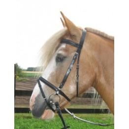 Angleška uzda za hladnokrvne konje MAX