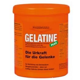 Gelatine Plus, za sklepe, 1kg