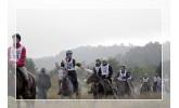 Endurance in terenska sedla<span> (5)</span>